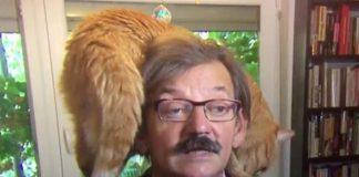 Aksi lucu kucing