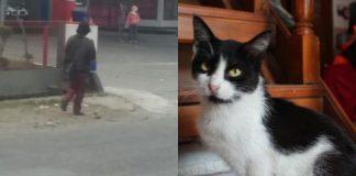 pemenggal kucing