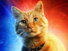 karakter kucing di film Captain Marvel